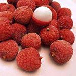 Vanna's Tropical Fruits and Vegatables - Dragonfruit